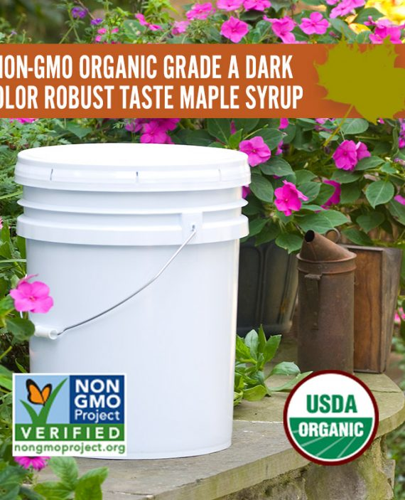 Non-GMO Dark Color Robust Taste Maple Syrup Pail